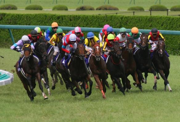 【競馬】 2200mと2500mの距離で史上最強馬は?