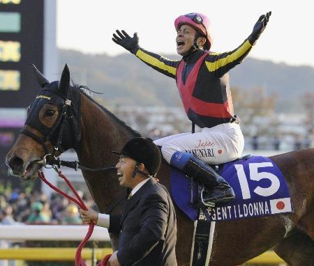 3冠牝馬ジェンティルドンナはドバイシーマクラシック出走へ、オルフェと激突する可能性あり