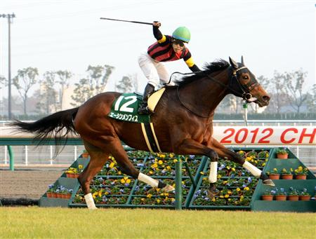 人気薄で来る馬と人気で来ない馬、どっち見抜ける?