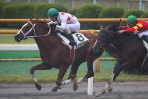 【競馬】 ガチで「ダサい」と思った馬名を挙げてけ