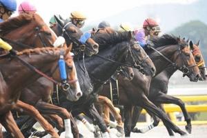 【競馬】 日本競馬史上に残るすごい騎乗ってなに?