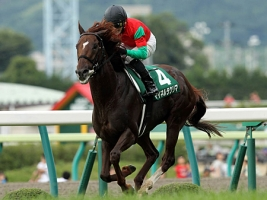 【競馬】 マイネルラクリマ、遠征先の香港で骨折… 現地で手術