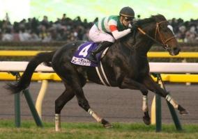 【競馬】 愛チャンピオンSにエピファ・ルージュなど日本馬7頭が登録