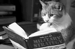 彡(゚)(゚)「新書一冊二時間で読めたらまあまあやろwwwwww」