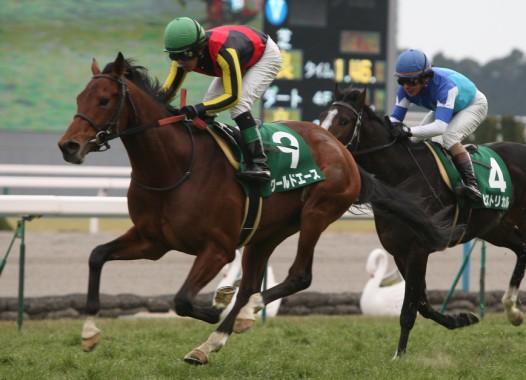 【競馬】 エリザベス女王杯にワールドエース出走wwwwww