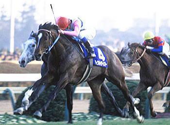 【競馬】 幻の三冠馬 ←どの馬を連想した?