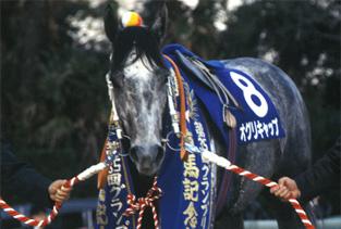 【競馬】 そろそろ糞血統の強い馬が現れてもいい頃じゃね?