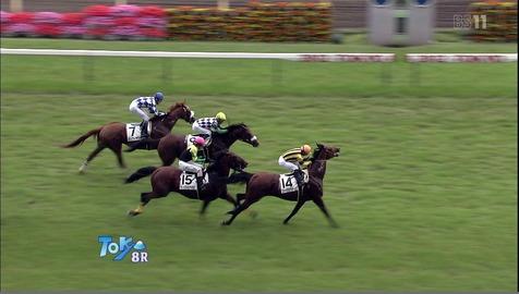 【競馬】 JRA 2013年から降着・失格のルールを変更