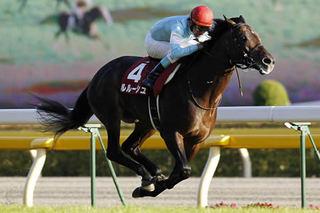 【競馬】 ルルーシュ、繋養先が見つからず種牡馬を断念 乗馬へ