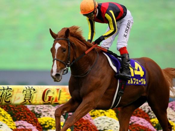 【競馬】 オルフェーヴル、有馬記念で引退 ラストランは池添とのコンビ