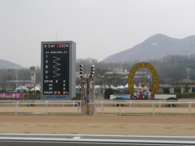 【競馬】 史上初! 大井競馬が韓国と国際交流競走を実施 9/1に韓国・ソウル、11/26に日本・大井で開催