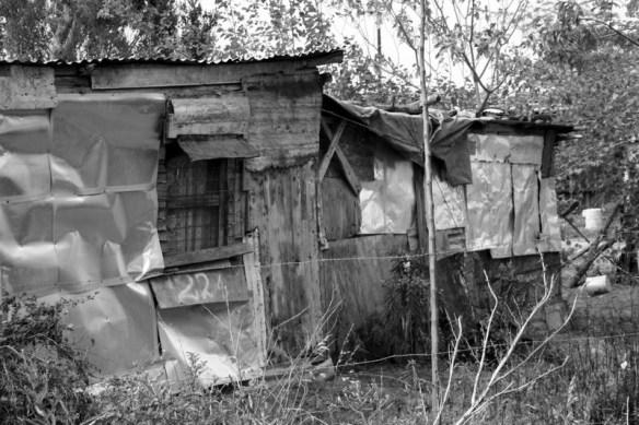 家の裏庭のほったて小屋にお婆さんが一人で住んでた