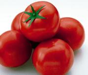 生のトマト食えないやつwwwwwwwwww