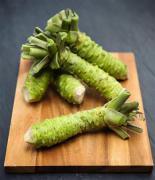 英で日本のワサビ栽培・販売 ヨーロッパでは初