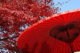 【衝撃】女の子の下着と傘の柄の趣味は一緒!!!!!!