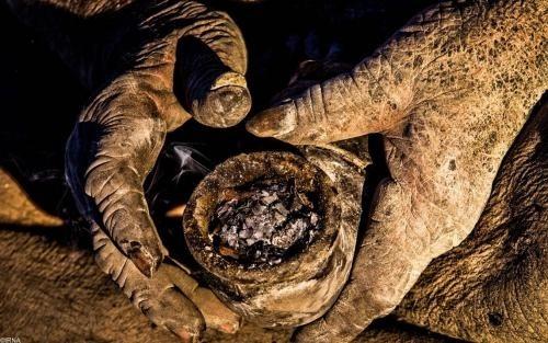 【閲覧注意】60年間風呂に入ってない男ワロタwwwwwwwwwww(画像あり)