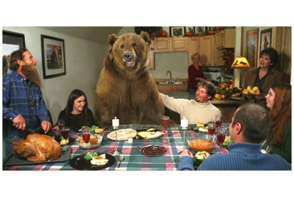 拾った熊を10年育てた結果wwwwwwwwww