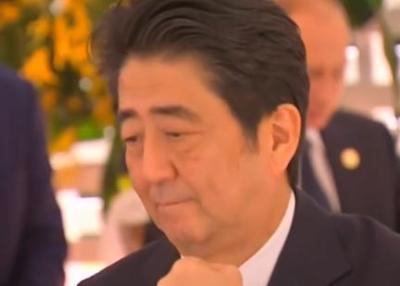 """東洋経済 「安倍首相がG20昼食会で""""手酌""""、なんとも寂し気で孤独感が目立つ。もう少し他の首脳と言葉を交わせばいいのに」 (動画)"""