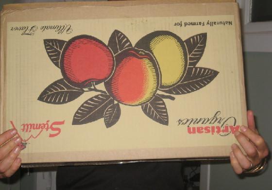 帰宅して家の中に入ろうとした際、 お隣さん(アメリカ人)がダンボールいっぱいのりんごを渡してきた