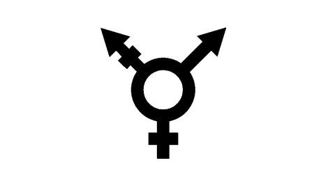 性同一性障害で更に、心が同性愛者と言うややこしい人が居るらしい