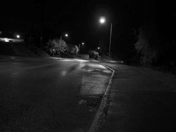 夜道を歩いていたらひったくりにあったので犯人を追いかけてみた
