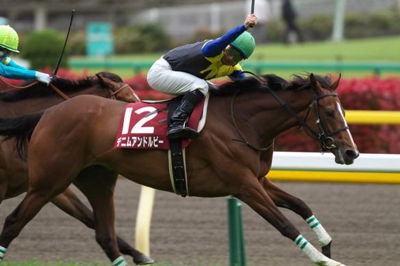 【競馬】 デニムアンドルビー、浜中騎乗でドバイへ