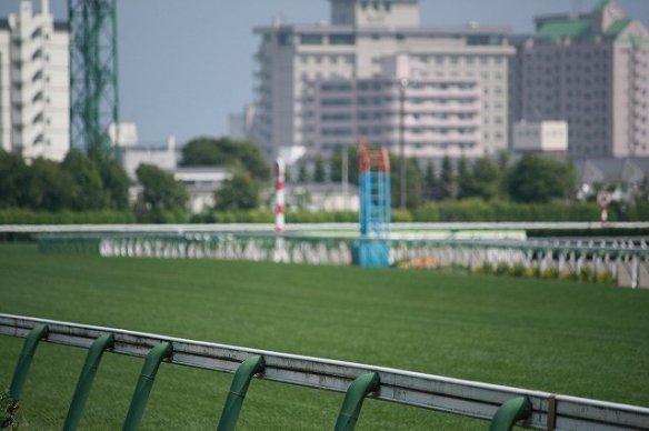 【競馬】 さあ夏競馬!函館開幕 在厩馬も600頭超と大にぎわい
