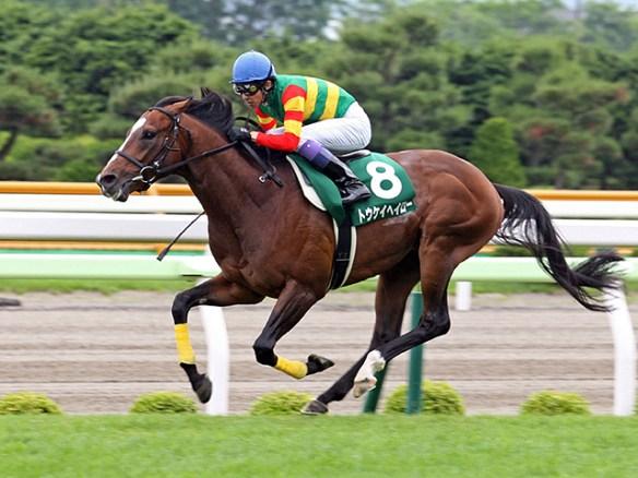【競馬】 トウケイヘイロー再び屈腱炎…種牡馬入りへ
