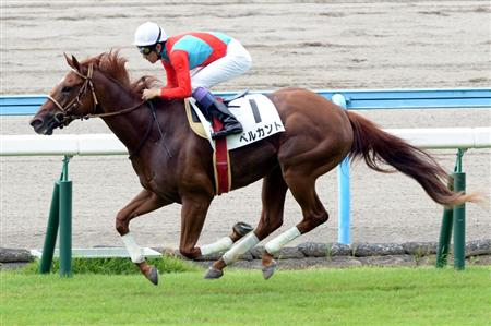 【競馬】 ベルカントが引退 初年度はキズナと配合
