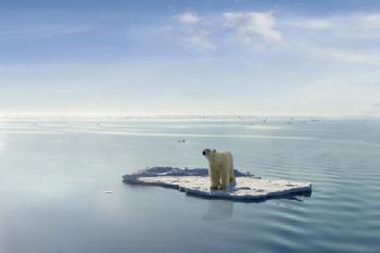 地球温暖化ってどうなったの?