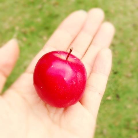 【真野恵里菜】真野ちゃん、押井監督をも魅了しフルーツをプレゼントされる