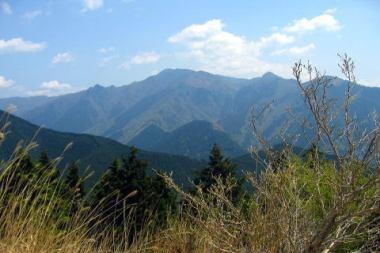 奈良の頂仙岳で遭難した女性(64)、チーズバーガーで飢えをしのぎ無事救助 … 沢に滑落して肋骨を折る重傷 → 携帯電話の電波が繋がりSOS - 奈良