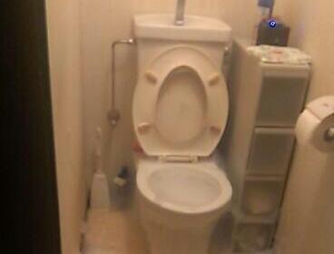 もう16歳になっちゃう女子高生「帰宅したら泡が。。。うちのトイレが大惨事」 (画像)