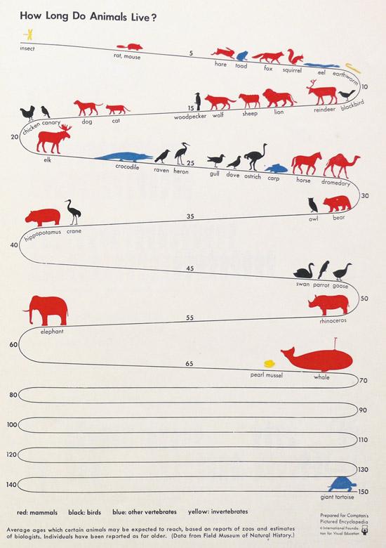 【驚愕】ゾウガメの平均寿命wwwwwwwwwwwwwww