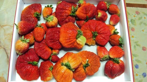 【閲覧注意】近所の人からイチゴもらったけどワロタwwwwwwwwwwwwww(画像あり)