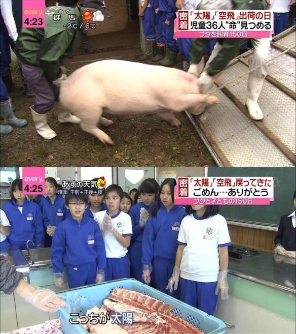 【画像】小学生が飼育した豚を出荷→肉になって戻ってきた