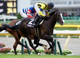 【競馬】 イスラボニータ、天皇賞秋へ ルメール騎手に乗り替わり