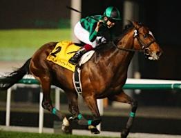 【JC】 もう誰もジャスタウェイが世界一位の馬だなんて思ってないよな?