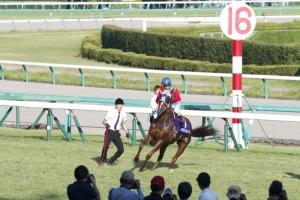 【高松宮記念】 ローレルベローチェ陣営「行くしかない」  ハクサンムーン陣営「この馬についてきたら潰れちゃうよ」