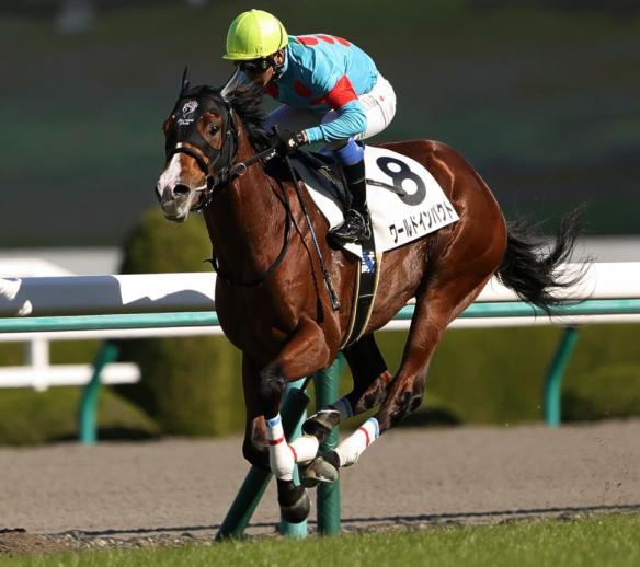 【競馬】 ワールドインパクトほど名前負けしてる馬も珍しいよな