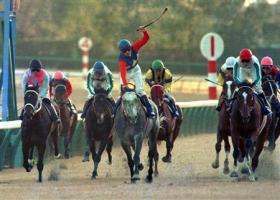 【競馬】 今後、オグリキャップを超える人気馬は現れるのか?