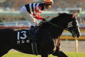 【競馬】 ガルボが引退… 乗馬に