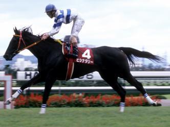 【競馬】 史上最強牝馬、ヒシナタリーについて語ろう