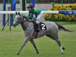 【競馬】 ホエールキャプチャ、左前脚に異常 ヴィクトリアM出走せず引退