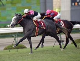【競馬】 ビワハヤヒデって本当に良い馬だったよな