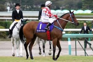 【競馬】 ラッキーナイン、スプリンターズS回避か? 調教師「新潟の馬房が狭すぎる」