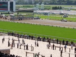 【競馬】 もしも、歴代芝最強馬が東京ダ2100mで戦ったら誰が勝つ?
