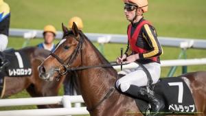【競馬】 ベルラップ、左前脚骨折…全治3カ月以上
