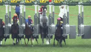 【競馬】 ゴールドシップの出遅れについて、JRAに94件のクレームが入るwwww