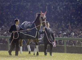 【競馬】 2014年度代表馬はジェンティルドンナ! ジャスタウェイに大差をつけ2度目の受賞